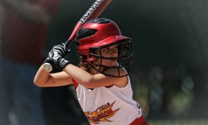 Best Fastpitch Softball Bat Reviews